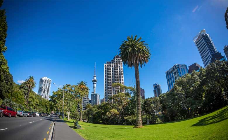 Auckland-City